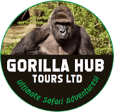 Gorilla-Hub-Tours-1